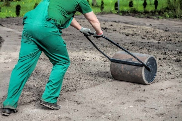 Трамбовка земли после посева газона