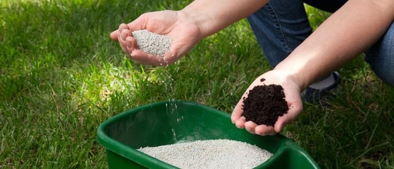 Азотное удобрение для газона